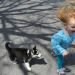 Thumbnail for The Importance of Puppy Socialization